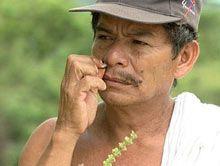 Medicina de todos. - Von Pflanzenheilern und Biopiraten in Chiapas
